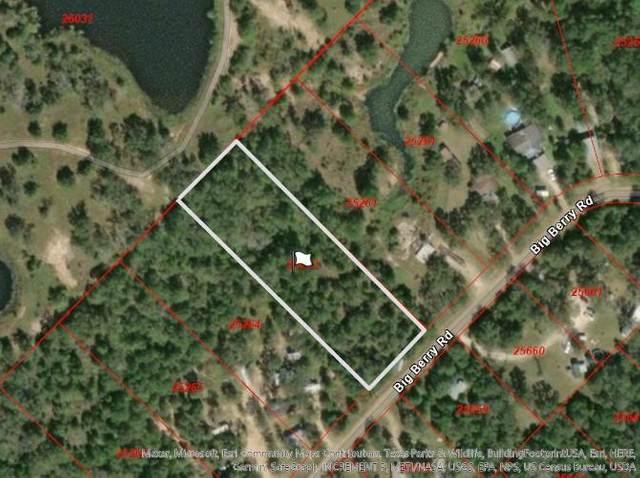 1640 Big Berry Road, Somerville, TX 77879 (MLS #49292556) :: Keller Williams Realty