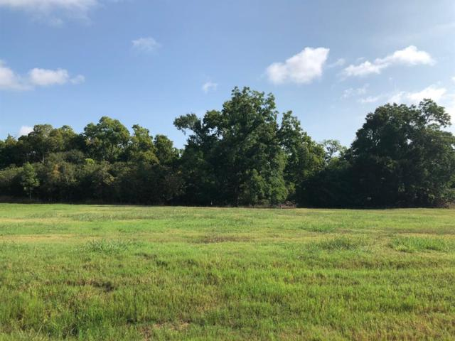 30903 Lower Oxbow Trace, Fulshear, TX 77441 (MLS #49336561) :: Texas Home Shop Realty