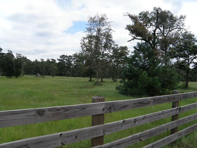 16911 Butera, Magnolia, TX 77355 (MLS #49366408) :: Montgomery Property Group | Five Doors Real Estate