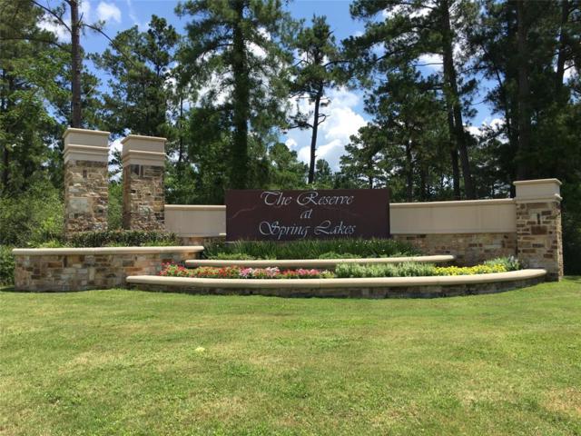31034 Spring Lake Boulevard, Tomball, TX 77375 (MLS #4943370) :: Giorgi Real Estate Group