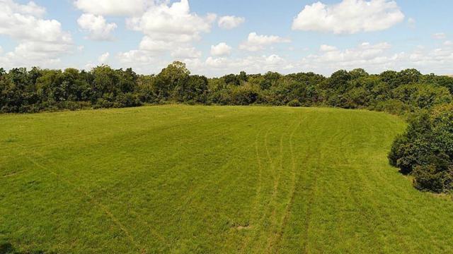 9 acre Re-plat Dahlstrom Road Re-Plat, Santa Fe, TX 77517 (MLS #49437595) :: Texas Home Shop Realty