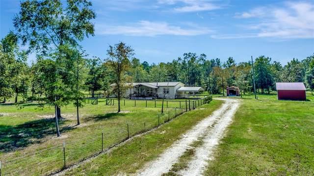 4526 Fm 356, Trinity, TX 75862 (MLS #49514889) :: Texas Home Shop Realty