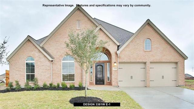 3207 Iris Trail Lane, Pearland, TX 77584 (MLS #495387) :: Texas Home Shop Realty