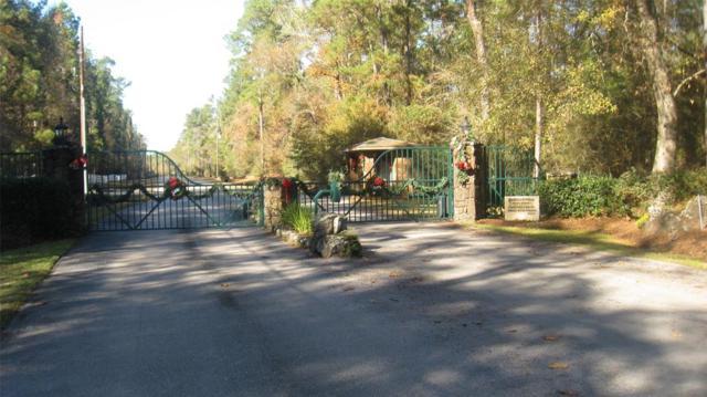 11 Riata, Magnolia, TX 77354 (MLS #49624581) :: Fairwater Westmont Real Estate