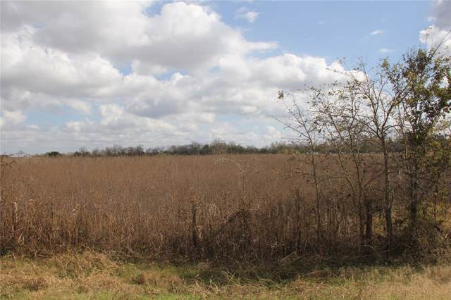 000 County Road 103, Boling, TX 77420 (MLS #49636743) :: Giorgi Real Estate Group