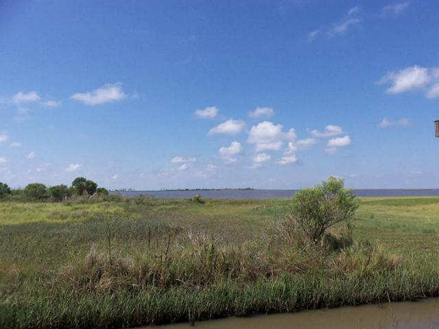 41 Beach Front, Gilchrist, TX 77617 (MLS #49695743) :: Texas Home Shop Realty