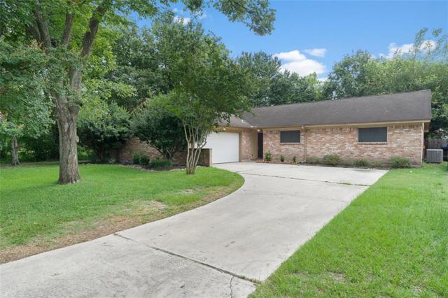 16410 N Mist Drive, Houston, TX 77073 (MLS #49743162) :: The SOLD by George Team