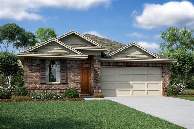 14038 Placid Bayou Trail, Houston, TX 77045 (#49743834) :: ORO Realty