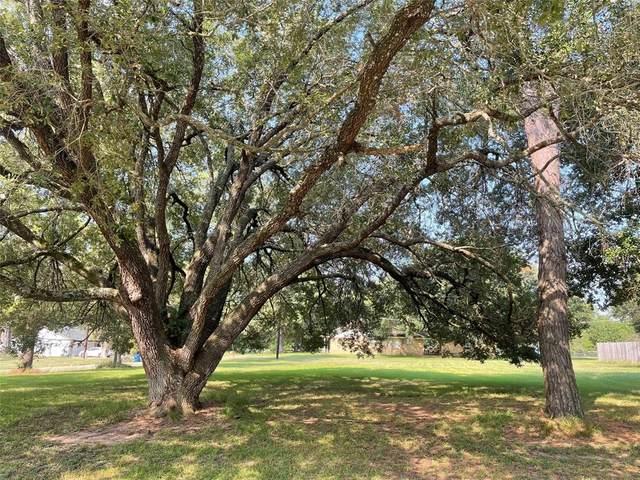 0 16th, Hempstead, TX 77445 (MLS #49803316) :: Caskey Realty