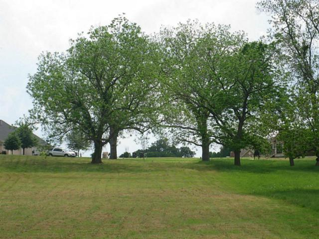 19016 Harbor Side Boulevard, Montgomery, TX 77356 (MLS #49854821) :: Giorgi Real Estate Group
