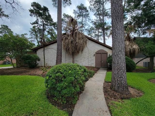 27006 W Jimmy Lane, Conroe, TX 77385 (MLS #49962660) :: The Home Branch