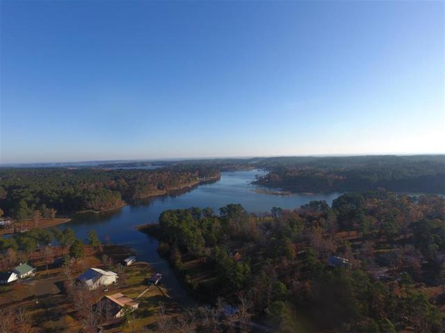 171 Joley Drive, Burkeville, TX 75932 (MLS #50012972) :: Connect Realty