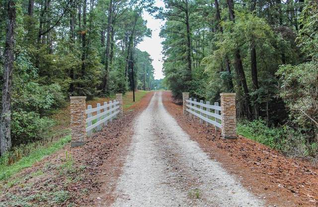 Lot 23 Lakeview Pines, Livingston, TX 77351 (MLS #50020234) :: The Freund Group