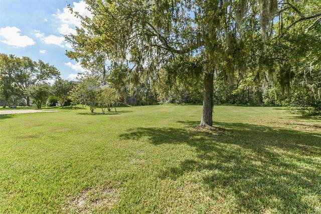 5362 Appleblossom Lane, Friendswood, TX 77546 (MLS #50064503) :: The SOLD by George Team