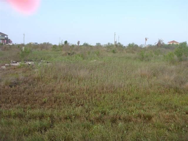 1107 Blacks Slip, Gilchrist, TX 77617 (MLS #50117214) :: My BCS Home Real Estate Group