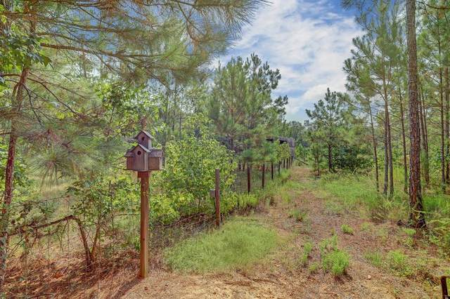 4121 Angus Court, Cleveland, TX 77328 (MLS #5020965) :: The Freund Group