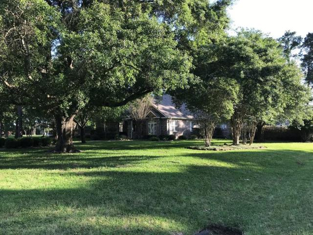 25615 Haven Lake Drive, Tomball, TX 77375 (MLS #50242432) :: Texas Home Shop Realty