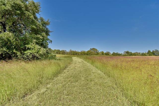 1108 S Marburger Lane, Round Top, TX 78954 (MLS #50270345) :: The Andrea Curran Team powered by Compass