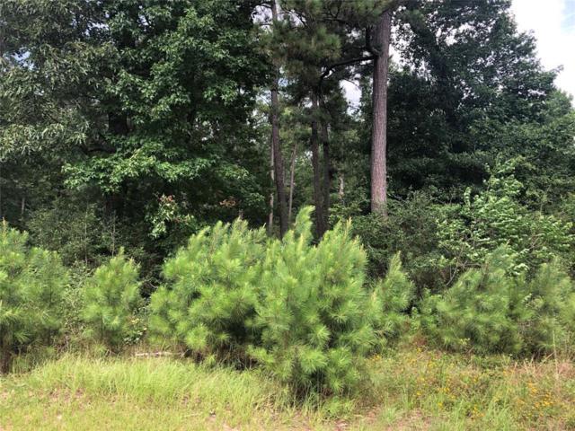 29213 Village Creek, Magnolia, TX 77355 (MLS #50409499) :: Giorgi Real Estate Group