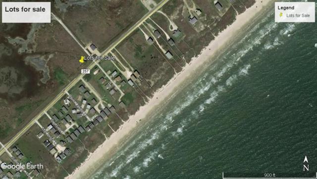 0000 Blue Water Hwy, Surfside Beach, TX 77541 (MLS #50449887) :: Texas Home Shop Realty