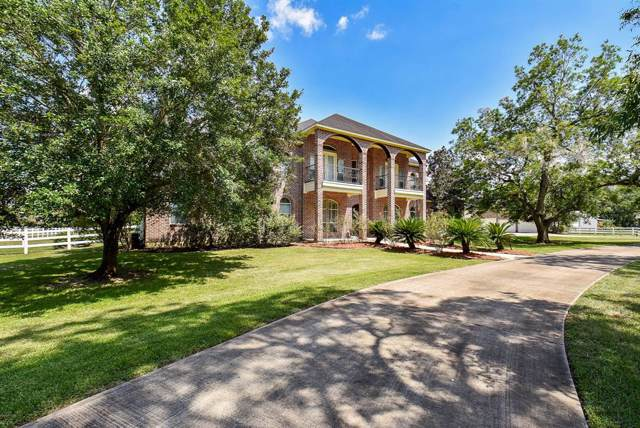 4226 Tankersley Circle, Rosharon, TX 77583 (MLS #50479736) :: The SOLD by George Team