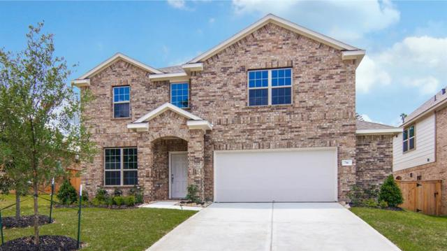 716 Red Elm Lane, Conroe, TX 77304 (MLS #50503611) :: Christy Buck Team