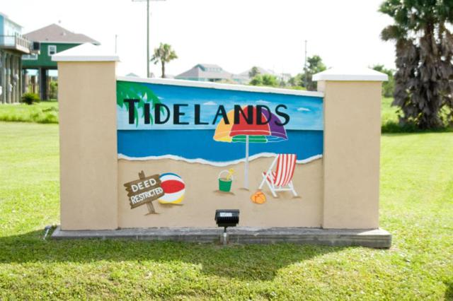 983 Palm Ridge Drive, Crystal Beach, TX 77650 (MLS #50544159) :: JL Realty Team at Coldwell Banker, United