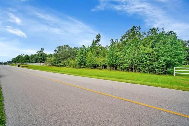8664 Grand Lake Estates Drive, Montgomery, TX 77316 (MLS #50575136) :: Lerner Realty Solutions