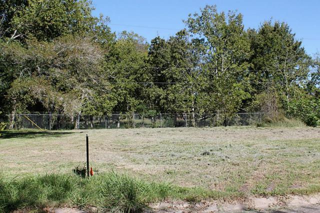 5323 Greylog Drive, Houston, TX 77048 (MLS #50654698) :: Texas Home Shop Realty