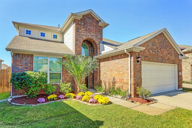 11702 Harristown Drive, Houston, TX 77047 (MLS #50791889) :: Connect Realty
