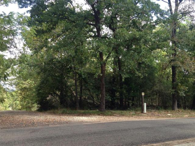 Lot 13 Tram Road, Crockett, TX 75835 (MLS #50792988) :: Texas Home Shop Realty