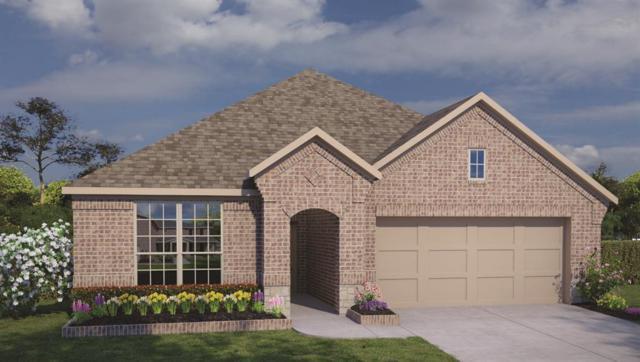 8510 Green Paseo Place, Rosenberg, TX 77469 (MLS #50800406) :: Magnolia Realty