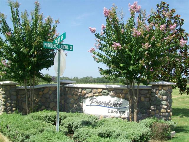 0 Providence Landing Drive, Columbus, TX 78934 (MLS #50931138) :: Christy Buck Team
