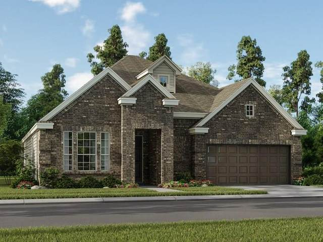 11211 Albany Meadow Lane, Richmond, TX 77406 (MLS #50939174) :: The SOLD by George Team