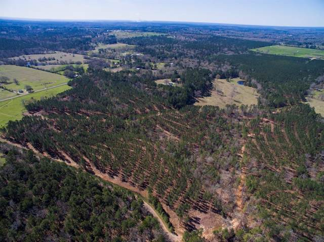 000 Fenley Flat Road, Pollok, TX 75969 (MLS #51070610) :: The Sansone Group