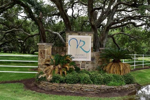 123 River Tree Drive, Palacios, TX 77465 (MLS #51101183) :: The Freund Group