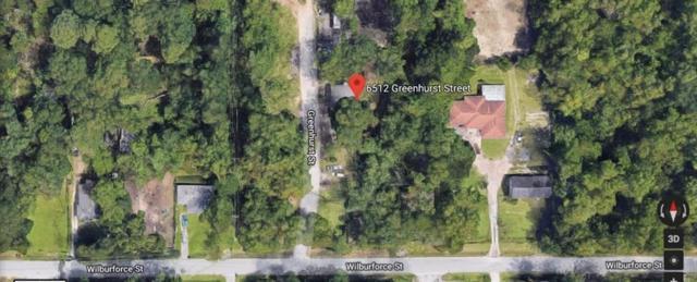 6512 Greenhood Street, Houston, TX 77091 (MLS #51145908) :: Texas Home Shop Realty