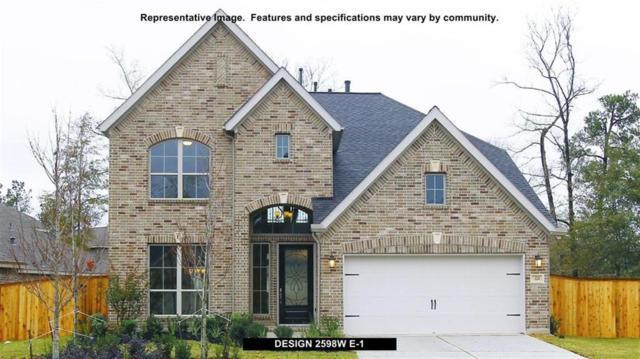 27244 Cyrus Ridge Lane, Magnolia, TX 77354 (MLS #51206736) :: Christy Buck Team