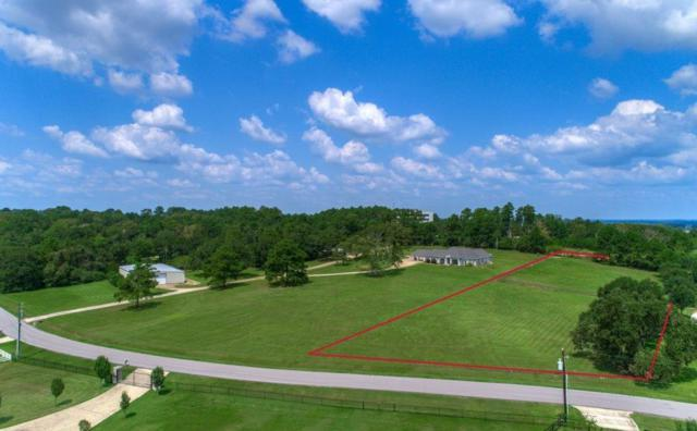 20036 Hilltop Ranch Drive, Montgomery, TX 77316 (MLS #51229820) :: The Home Branch
