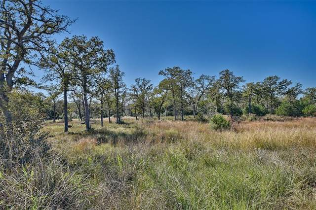 TBD Sadie Lane, Round Top, TX 78954 (MLS #51269460) :: NewHomePrograms.com LLC