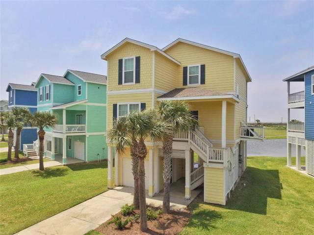 4206 King Rail Circle, Galveston, TX 77554 (MLS #51320050) :: Magnolia Realty