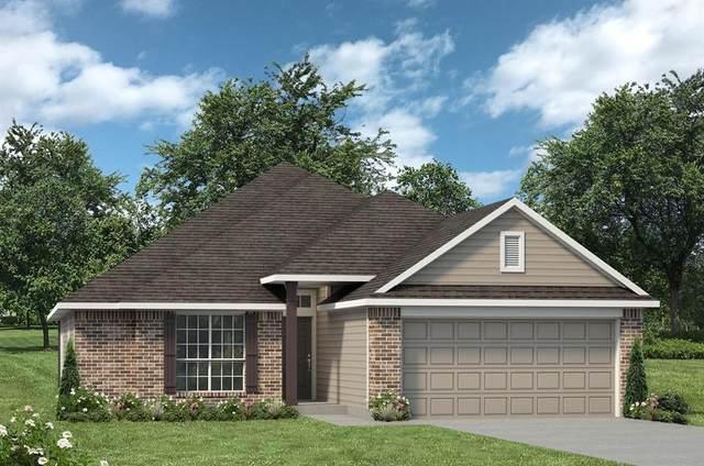 291 Shoreview Drive, Conroe, TX 77303 (MLS #51321708) :: Caskey Realty