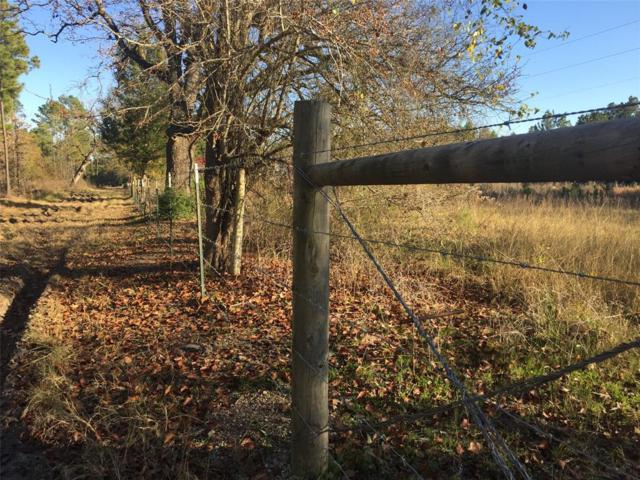 5.60 Acres County Road 215, Anderson, TX 77830 (MLS #51369224) :: The SOLD by George Team