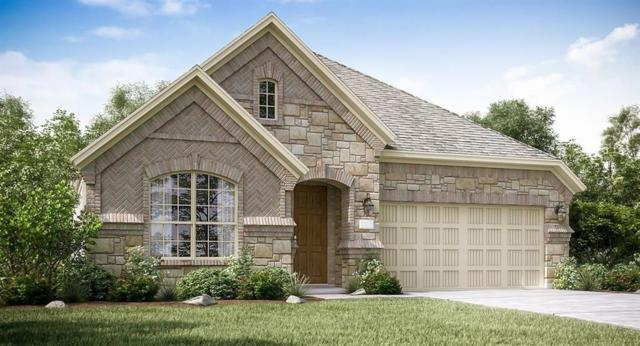 2733 Bethel Springs Lane, League City, TX 77573 (MLS #51399533) :: Rachel Lee Realtor
