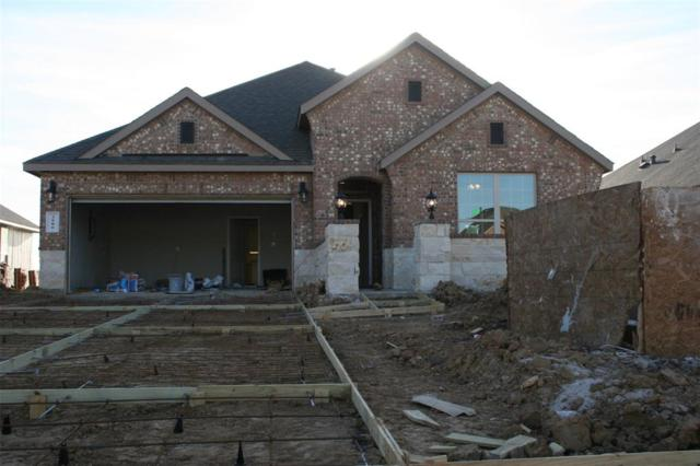 3906 Kellys Falls Lane, Fulshear, TX 77494 (MLS #51423472) :: Krueger Real Estate