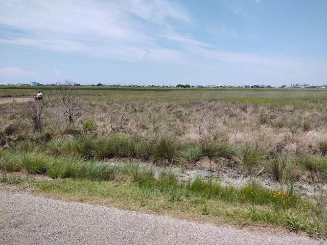 1646 County Road 299 Heron, Sargent, TX 77414 (MLS #51438937) :: The Freund Group