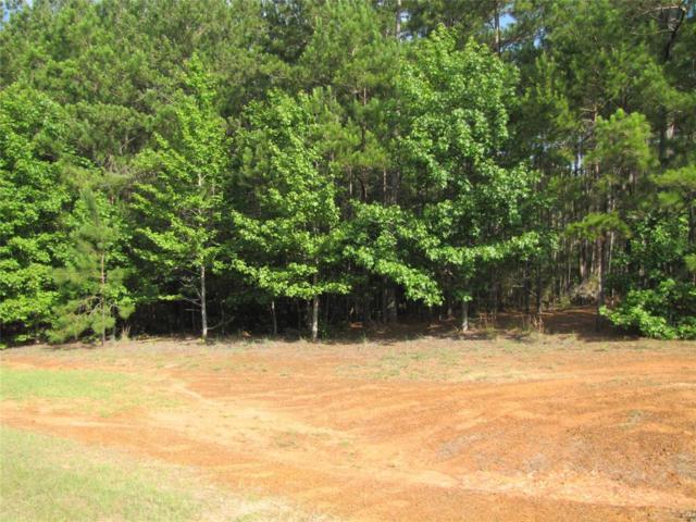 29031 Deer Creek, Magnolia, TX 77355 (MLS #51443365) :: Giorgi Real Estate Group