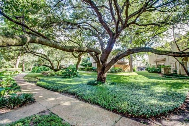 2100 Tanglewilde Street #226, Houston, TX 77063 (MLS #51486257) :: Krueger Real Estate