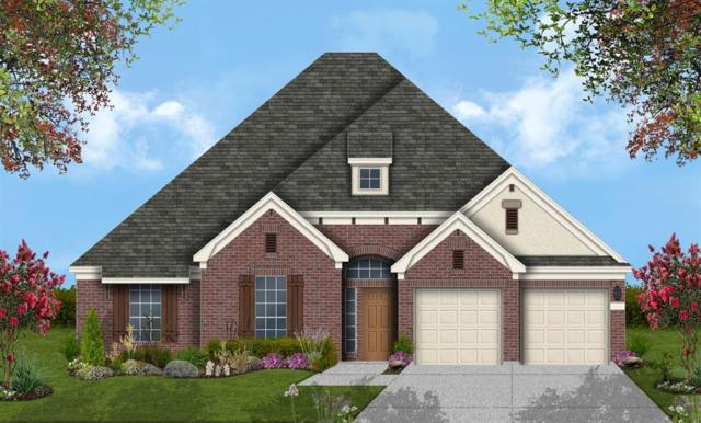 1711 Lakeside Harbor Court, League City, TX 77573 (MLS #51521569) :: The Bly Team