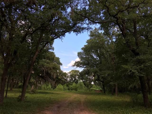 3333 Bowser Road, Fulshear, TX 77441 (MLS #51537706) :: Christy Buck Team